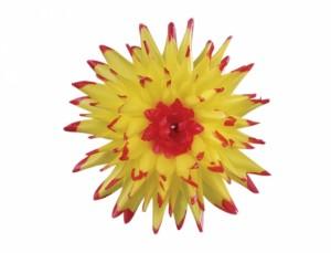 Jiřina  Kaktusovitá 15cm