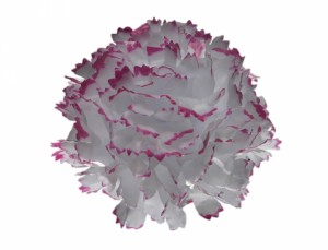 Karafiát 9cm bílo-červený