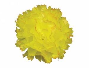 Karafiát 9cm žluto-oranžový