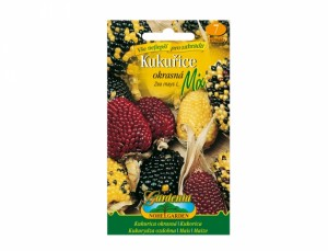 Kukuřice okrasná Mix 1 semen