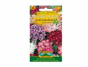 Klinček bradatý vysoký jednoduchý Mix 450 semien