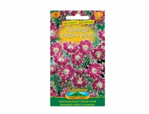 Aquilegia vulgaris - Orlíček ružovo biely