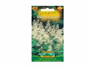 Semená udatný biela - Aruncus dioicus