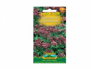 Sadec- Eupatorium cannabinum