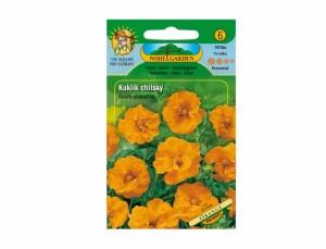 Kuklík chilský Orange 50 semen